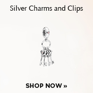 Pandora Silver Charms and Clips