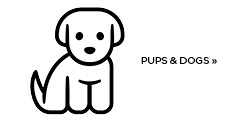 Shop all Puppies and Dogs