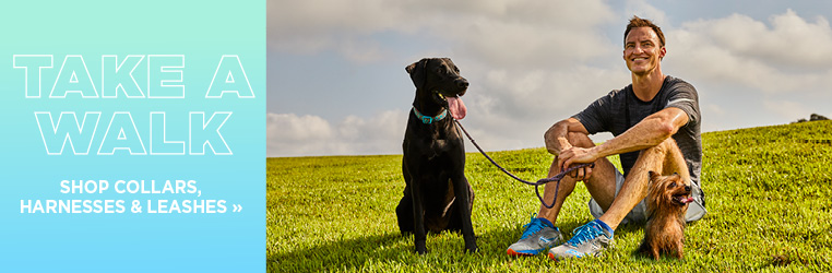 Take A Walk. Our Leashes make it easy.