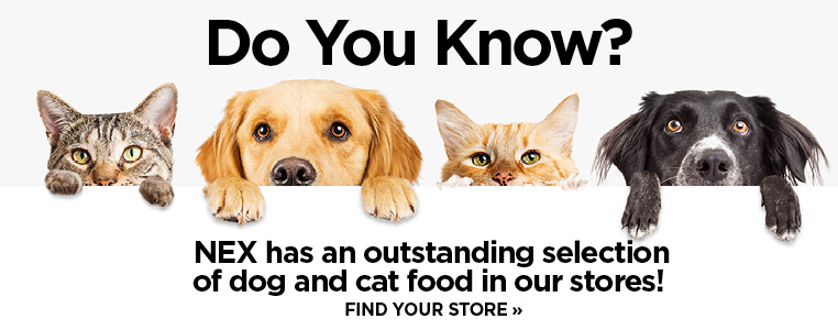 Outstanding Selection of Dog and Cat Food in Stores