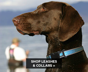 Kurgo Leashes & Collars