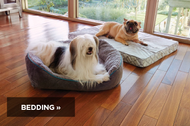 Shop Petco bedding