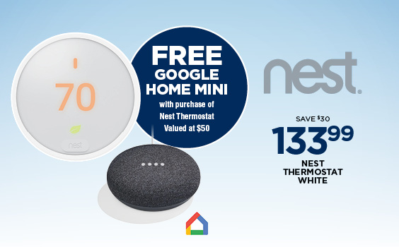 Free Google Home Mini with Purchase