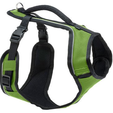 PetSafe EasySport Harness Large Apple Width 28-42 Inches