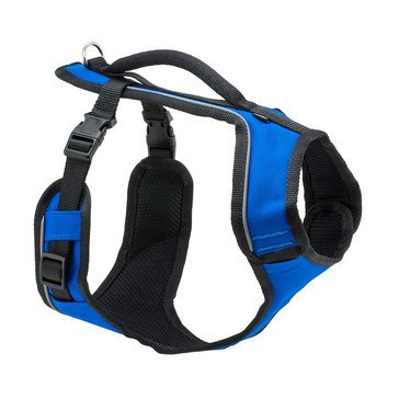 PetSafe EasySport Harness Large Blue Width 28-42 Inches