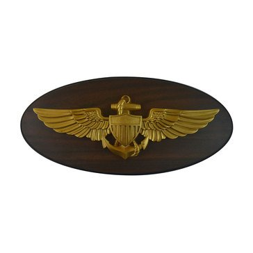 LS Enterprises USN Aviator Pilot Oval Plaque With Medallion