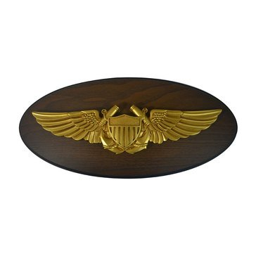 LS Enterprises USN Naval Flight Officer Oval Plaque With Medallion