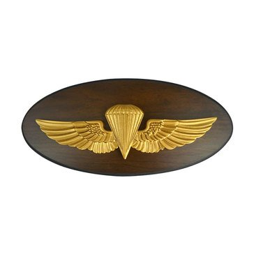 LS Enterprises USN Parachutist Oval Plaque With Medallion