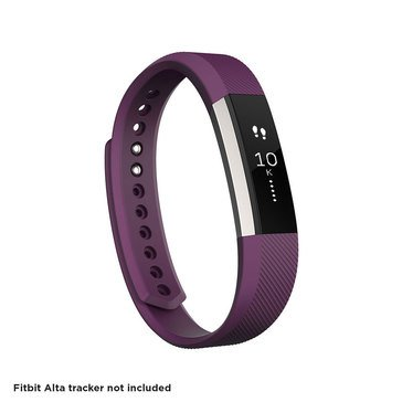 Fitbit Alta Classic Accessory Band - Plum / Large