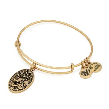 Alex and Ani Sister Expandable Bangle, Gold Finish