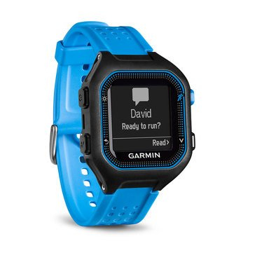 Garmin Forerunner 25 GPS Watch - Black/Blue - Large