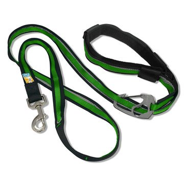 Kurgo Reflect & Protect Quantum Leash Grass Green