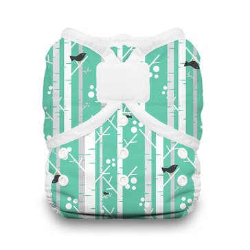 Thirsties Snap Duo Wrap Cloth Diaper, Aspen Green - Size 2