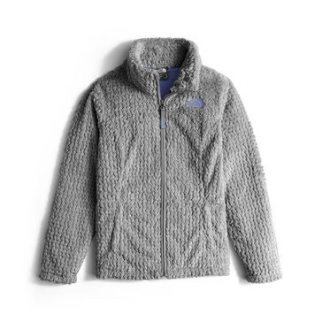 The North Face Big Girls' Laurel Fleece Jacket, Metallic Silver