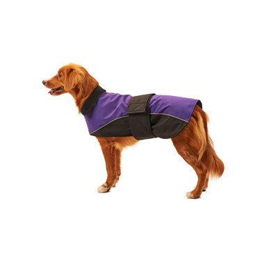 Ethical Pet Waterproof Reflective Coat, Purple, Extra Small