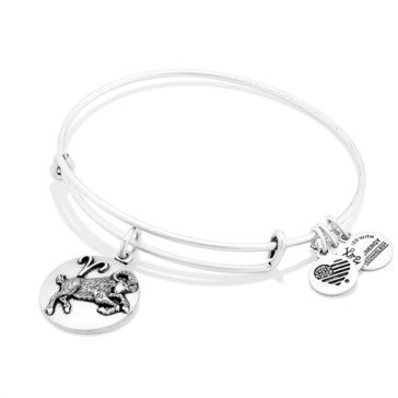 Alex and Ani Aries III Bangle