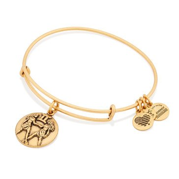 Alex and Ani Gemini III Bangle