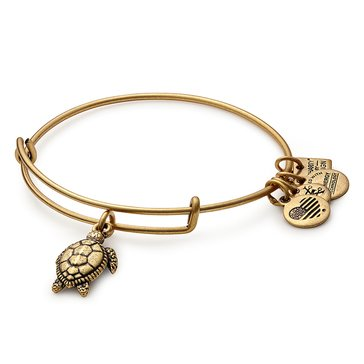 Alex And Ani Charity By Design, Turtle Bangle, Gold Tone