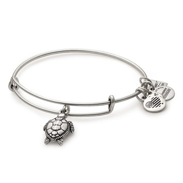 Alex And Ani Charity By Design, Turtle Bangle, Silver Tone