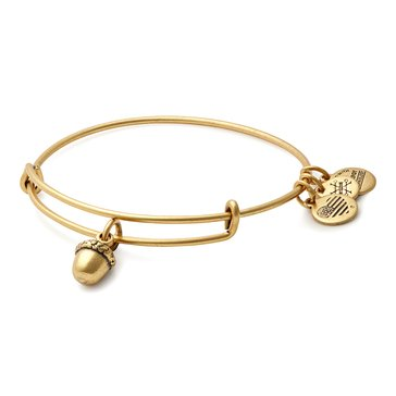 Alex and Ani Unexpected Blessings Bangle