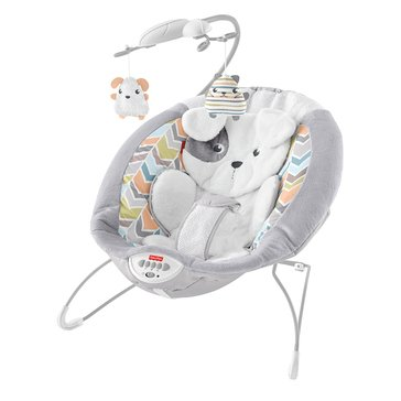 Fisher Price Snug-A-Puppy Deluxe Bouncer