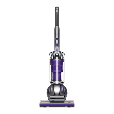 Dyson Ball Animal II, Iron/Purple (227635-01)