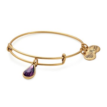Alex and Ani February Amethyst Colored Swarovski Teardrop Bangle
