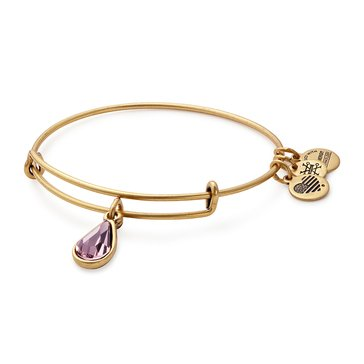 Alex and Ani June Birth Month Expandable Bangle with Light Amethyst Swarovski Crystal, Gold Finish