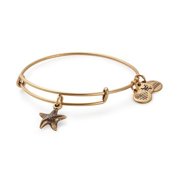 Alex And Ani II Bangle