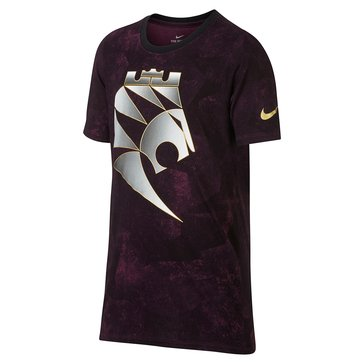 Nike Big Boys' Lebron Chess Lion Tee, Bordeaux