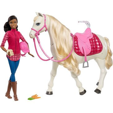 Barbie DreamHorse & Doll