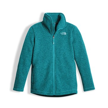 The North Face Big Girls' Crescent Full Zip Fleece Jacket, Blue