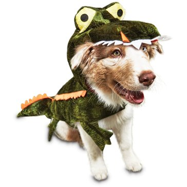 Halloween Gator Dog Costume, Medium