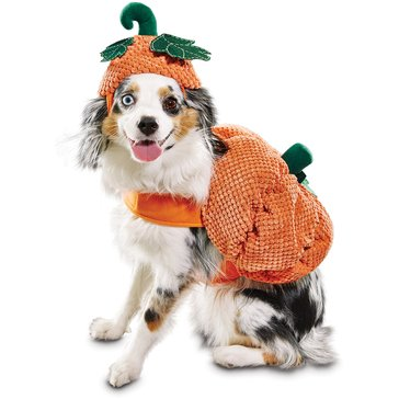 Halloween Pumpkin Dog Costume, Large