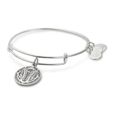 Alex and Ani Godspeed Color Infusion Expandable Bangle, Silver Finish