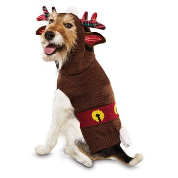 Holiday Reindeer Character Hoodie with Bells, X-Small