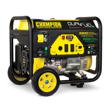 Champion 5500-Watt Dual Fuel Generator (100231)