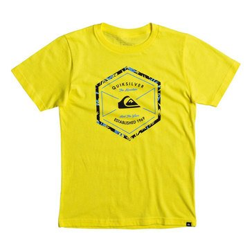 Quiksilver Big Boys' Octalogo Short Sleeve Tee, Buttercup
