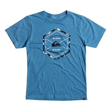 Quiksilver Big Boys'  Octalogo Short Sleeve Tee, Short