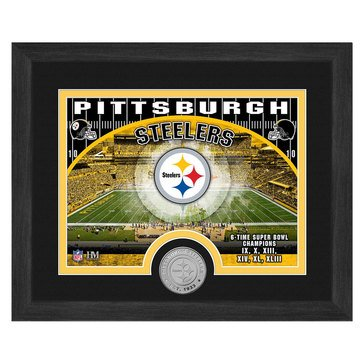 The Highland Mint Pittsburg Steelers 9x11 Single Coin Team Photo