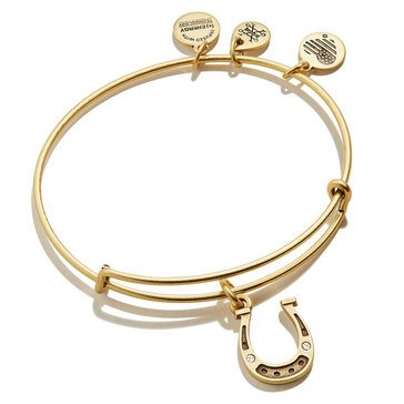 Alex and Ani Charity By Design Horseshoe Bangle