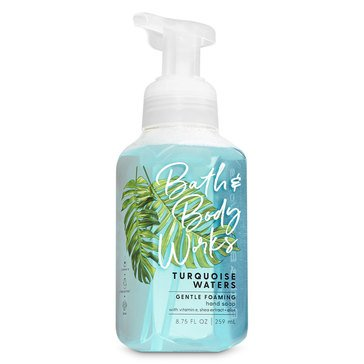 Bath & Body Works Turquoise Waters Gentle Foaming Hand Soap