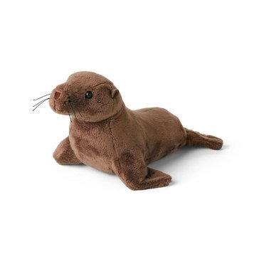 American Girl Sea Lion Pup