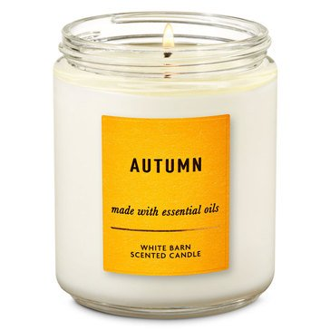 Bath & Body Works Single Wick Candle Autumn