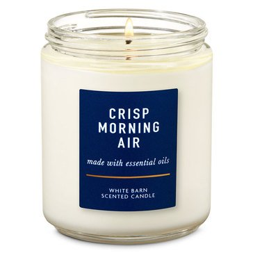 Bath & Body Works Single Wick Candle Crisp Morning Air