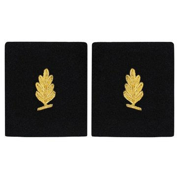 Sleeve Device in Gold on Blue for Medical Service Corps