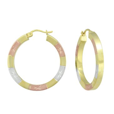 Sterling Silver Tricolor Hoop E/R