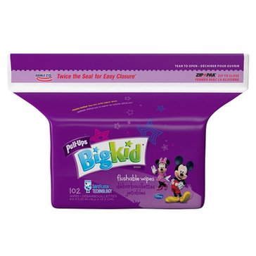 Huggies Big Kid Flushable Wipes, 102-Count