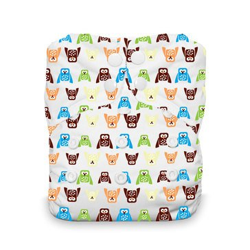 Thirsties Snap All-In-One Cloth Diaper, Hoot
