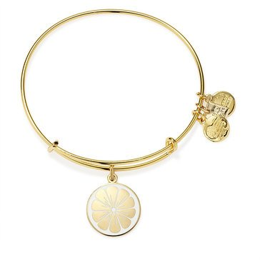 Alex and Ani Zest For Life II Bangle